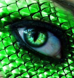 Snake Green Eyes